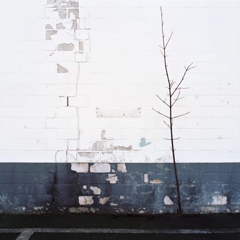 juan_baraja-arquitecturas-hamburgo-01