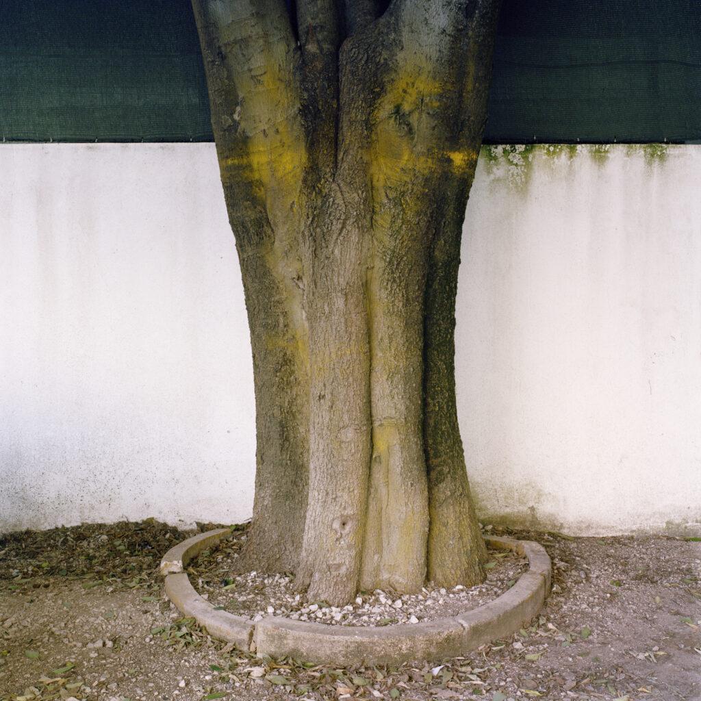 juan_baraja-arquitecturas-lisboa-34