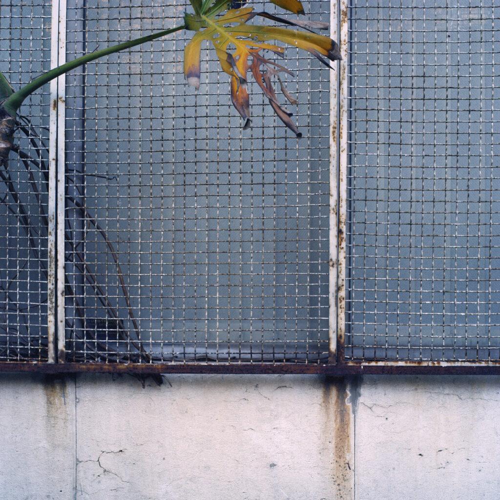 juan_baraja-arquitecturas-lisboa-42
