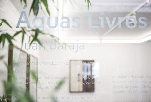 Juan Baraja - Aguas Livres